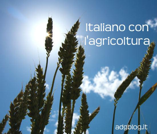 agricoltura550