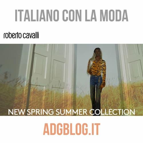 italiano con la moda roberto cavalli