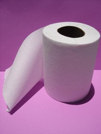 la storia della carta igienica comprensione di italiano
