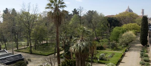 L'orto botanico del Museo di Storia Naturale di Firenze