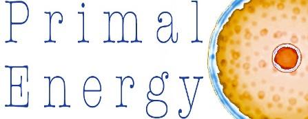 primal_energy