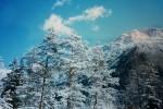 Dobbiaco e Cortina