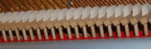 I martelli di un pianoforte