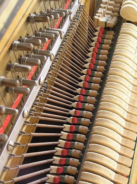 Non si deve pulire l'interno dello strumento, soprattutto con prodotti aggressivi, o i legni sarebbero seriamente danneggiati.