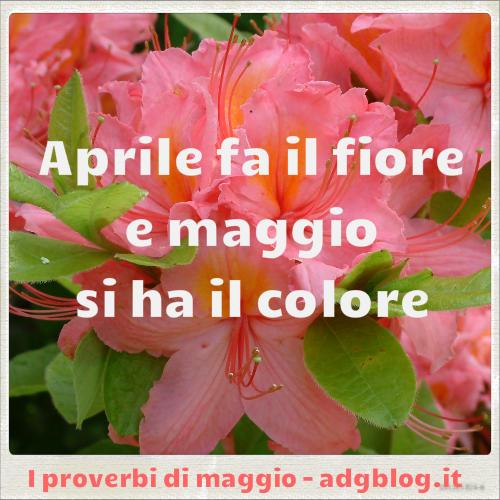 Proverbi di maggio