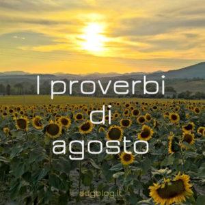 proverbi agosto