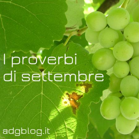Proverbi settembre