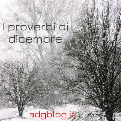 proverbi dicembre