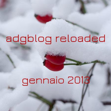 adgblog gennaio 2013